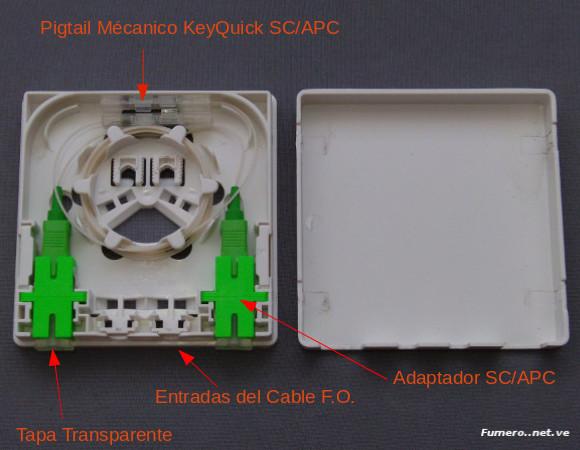 Interior de Roseta Óptica Preconectorizada de GetConnect con 2 Pigatil Mécanico KeyQuick