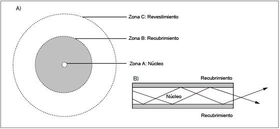 Figura 2 A) Zonas de una ferrule y B) Guiado de la luz en fibra óptica multimodo