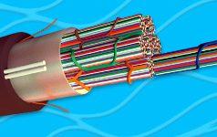 Cables de fibra óptica WTC