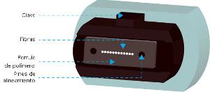 Partes de un conector MPO